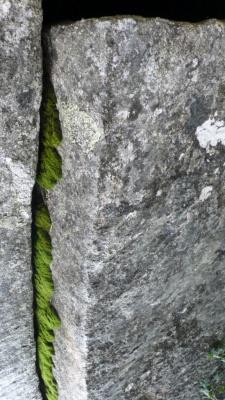 escletxa verda [1024x768]